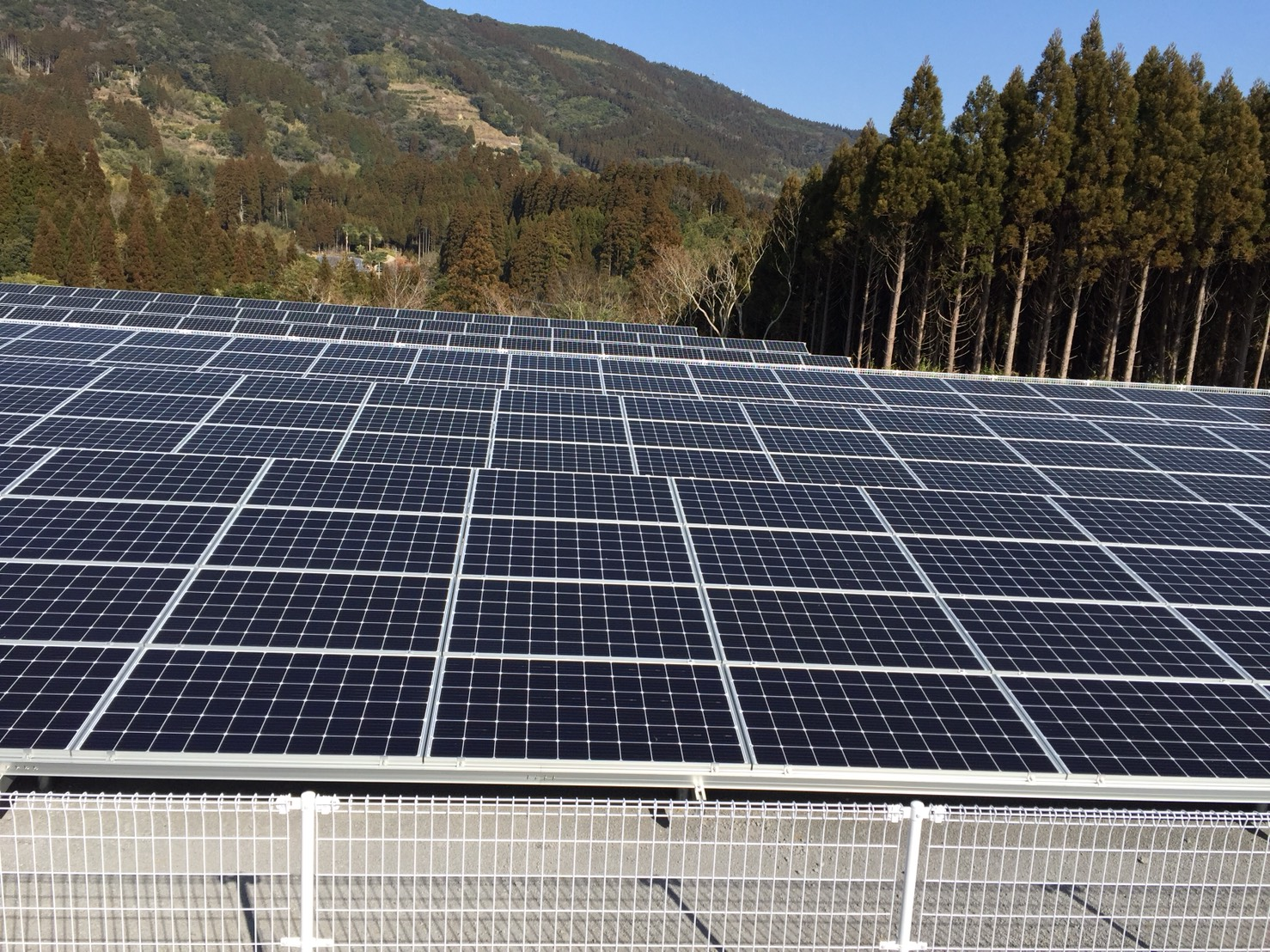 太陽光314KWの発電所が完成しました。